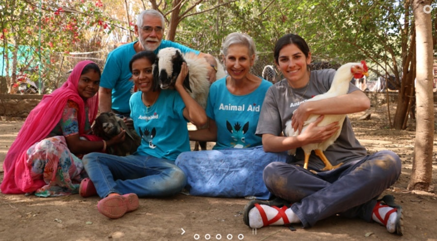 ANIMALS RESCUE PROJECTS IN UDAIPUR, INDIA
