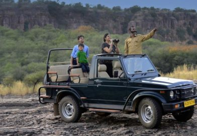 Jeep Safari in Ranthambore National Park