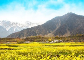 Best things to do in kashmir