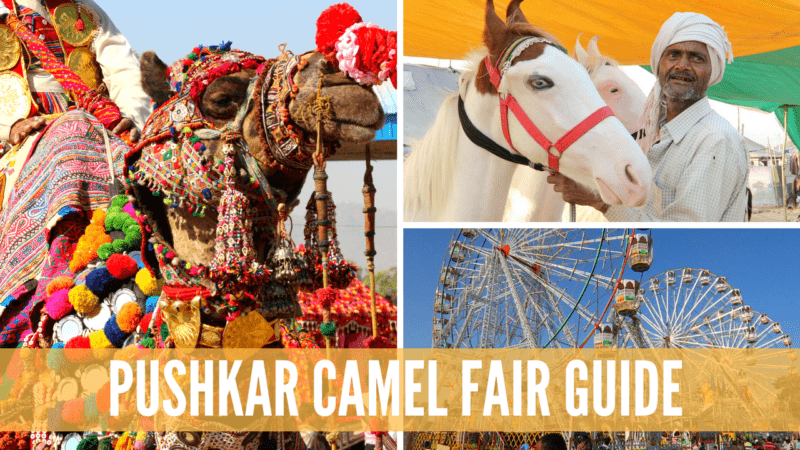 Pushkar Camel Fair Guide